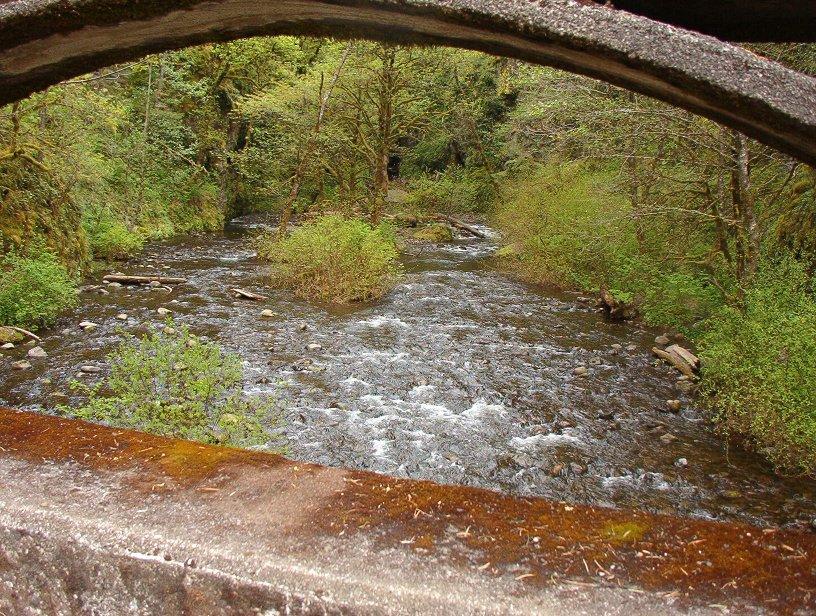 Short little creek