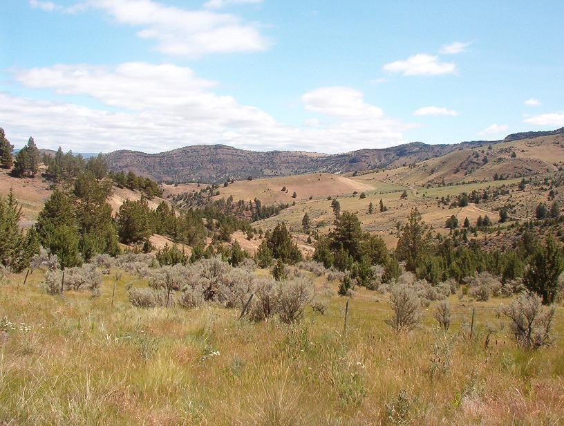 Landscape North of Mitchell