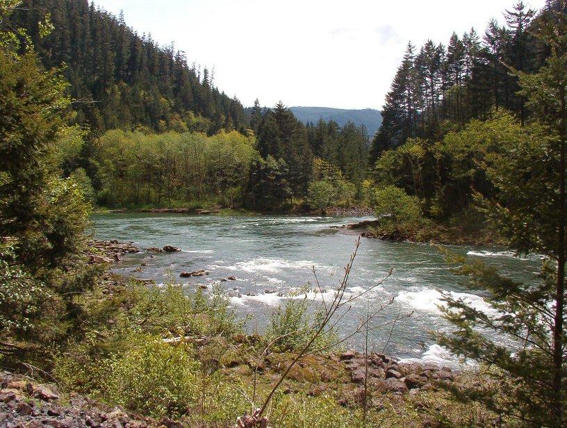 Clackamas River bend