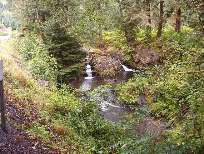 Barth Falls, along Oregon Route 202