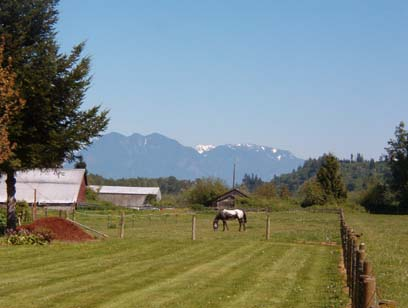 View of the Cascades from Ben Howard Rd