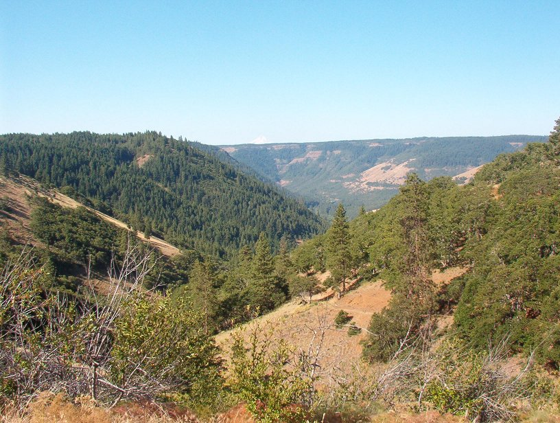 View down the Klickitat River Canyon