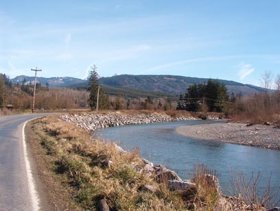 Alongside the Nooksack River at the South end of Mosquito Lake Road