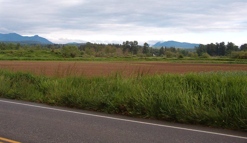 View SE towards Snoqualmie Pass and the Cascades