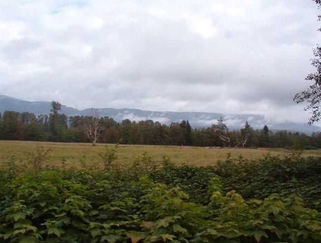 Old Pastureland along South Skagit Highway
